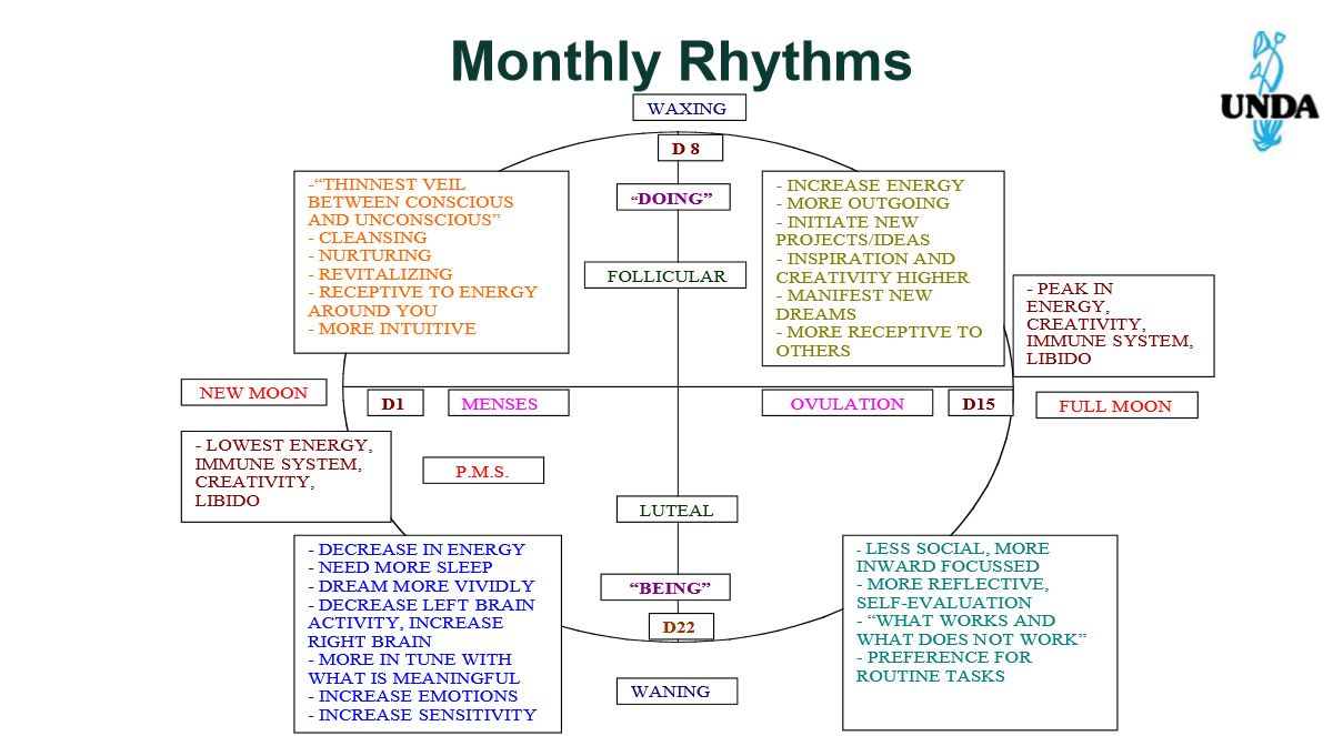 Monthly Seed Cycling Rythms